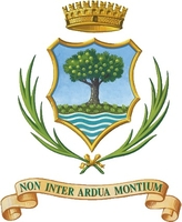 coat of arms for Castagnole Piemonte, Italy