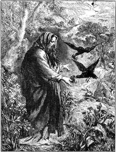 Elijah by ravens
