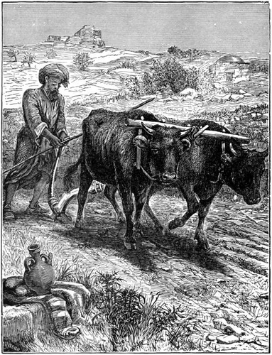 Ploughing in Canaan